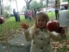 apple picking fun in the park